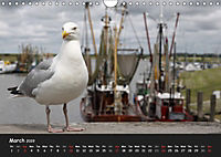 Ostfriesland - Land on the coast / UK-Version (Wall Calendar 2019 DIN A4 Landscape) - Produktdetailbild 3