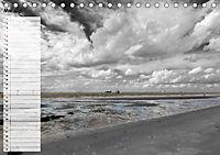 Ostfriesland Maritime Landschaften in Colorkey (Tischkalender 2019 DIN A5 quer) - Produktdetailbild 5