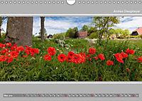 Ostfriesland Panorama (Wandkalender 2019 DIN A4 quer) - Produktdetailbild 5
