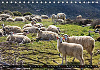 Ostkreta - Zwischen Sitia und Ierapetra (Tischkalender 2019 DIN A5 quer) - Produktdetailbild 5