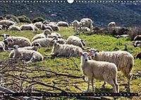 Ostkreta - Zwischen Sitia und Ierapetra (Wandkalender 2019 DIN A3 quer) - Produktdetailbild 2