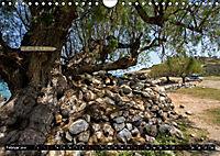 Ostkreta - Zwischen Sitia und Ierapetra (Wandkalender 2019 DIN A4 quer) - Produktdetailbild 4