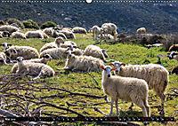 Ostkreta - Zwischen Sitia und Ierapetra (Wandkalender 2019 DIN A2 quer) - Produktdetailbild 5