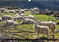 Ostkreta - Zwischen Sitia und Ierapetra (Wandkalender 2019 DIN A3 quer) - Produktdetailbild 5