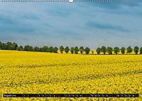 Ostsee - Boltenhagen (Wandkalender 2019 DIN A2 quer) - Produktdetailbild 8