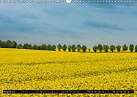 Ostsee - Boltenhagen (Wandkalender 2019 DIN A3 quer) - Produktdetailbild 8