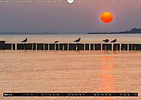 Ostsee - Boltenhagen (Wandkalender 2019 DIN A3 quer) - Produktdetailbild 5