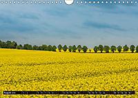 Ostsee - Boltenhagen (Wandkalender 2019 DIN A4 quer) - Produktdetailbild 8