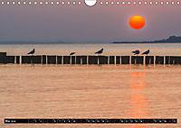 Ostsee - Boltenhagen (Wandkalender 2019 DIN A4 quer) - Produktdetailbild 5