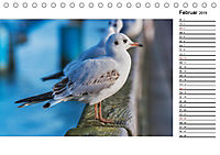 Ostseebad Binz - Zeit für Erholung (Tischkalender 2019 DIN A5 quer) - Produktdetailbild 2