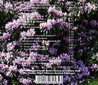Osvaldo Lacerda: Cançoes - Lieder - Produktdetailbild 1