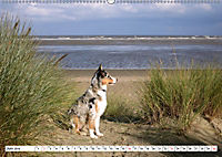 Ouddorp - Nordseeperle (Wandkalender 2019 DIN A2 quer) - Produktdetailbild 6