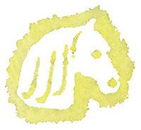 Outdoor Malspaß Pferd (gelb) - Produktdetailbild 2