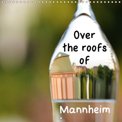 Over the Roofs of Mannheim (Wall Calendar 2019 300 × 300 mm Square), Ulrike SSK