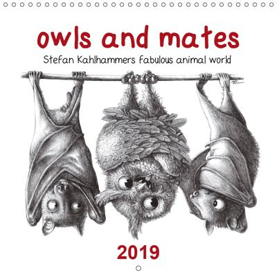 owls and mates 2019 (Wall Calendar 2019 300 × 300 mm Square), Stefan Kahlhammer