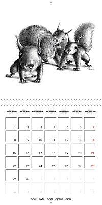 owls and mates 2019 (Wall Calendar 2019 300 × 300 mm Square) - Produktdetailbild 4