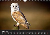 Owls (Wall Calendar 2019 DIN A4 Landscape) - Produktdetailbild 3
