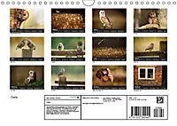 Owls (Wall Calendar 2019 DIN A4 Landscape) - Produktdetailbild 13