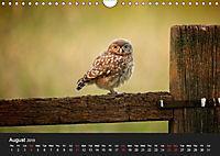 Owls (Wall Calendar 2019 DIN A4 Landscape) - Produktdetailbild 8