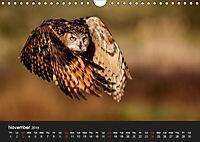 Owls (Wall Calendar 2019 DIN A4 Landscape) - Produktdetailbild 11