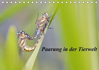 Paarung in der Tierwelt (Tischkalender 2019 DIN A5 quer), Wilfried Martin