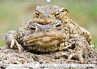 Paarung in der Tierwelt (Wandkalender 2019 DIN A3 quer) - Produktdetailbild 3