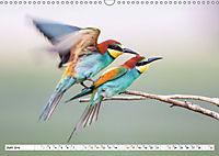 Paarung in der Tierwelt (Wandkalender 2019 DIN A3 quer) - Produktdetailbild 6