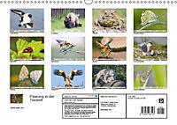 Paarung in der Tierwelt (Wandkalender 2019 DIN A3 quer) - Produktdetailbild 13