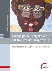 Pädagogische Perspektiven auf Transformationsprozesse -  pdf epub