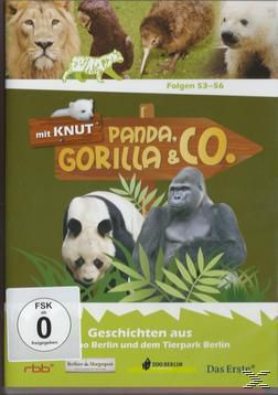 Panda, Gorilla & Co. Vol.6 (Folgen 53-56), Gorilla Panda