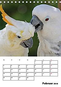 Papageien - Graupapagei, Rosella und Co. (Tischkalender 2019 DIN A5 hoch) - Produktdetailbild 2