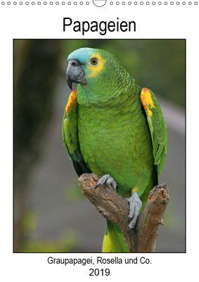 Papageien - Graupapagei, Rosella und Co. (Wandkalender 2019 DIN A3 hoch), Antje Lindert-Rottke