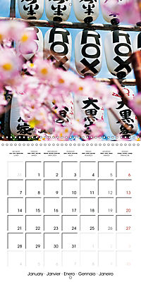 Passing beauty - Cherry blossoms in Japan (Wall Calendar 2019 300 × 300 mm Square) - Produktdetailbild 1
