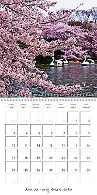 Passing beauty - Cherry blossoms in Japan (Wall Calendar 2019 300 × 300 mm Square) - Produktdetailbild 6
