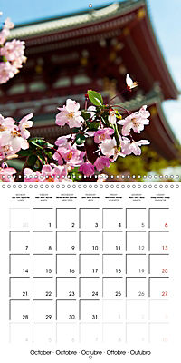 Passing beauty - Cherry blossoms in Japan (Wall Calendar 2019 300 × 300 mm Square) - Produktdetailbild 10