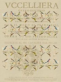 Pasta für Nachtigallen Geschenkpapier-Heft - Motiv Orange Federn - Produktdetailbild 4