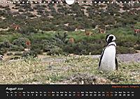 Penguins 2019 (Wall Calendar 2019 DIN A4 Landscape) - Produktdetailbild 8