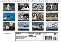 Penguins 2019 (Wall Calendar 2019 DIN A4 Landscape) - Produktdetailbild 13