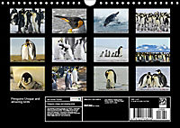 Penguins Unique and amazing birds (Wall Calendar 2019 DIN A4 Landscape) - Produktdetailbild 13