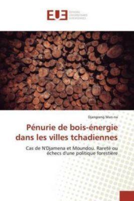 Pénurie de bois-énergie dans les villes tchadiennes, Djangrang Man-na