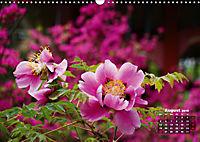 Peony Rose Without Thorns (Wall Calendar 2019 DIN A3 Landscape) - Produktdetailbild 8