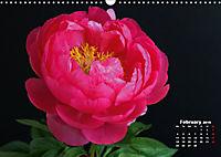 Peony Rose Without Thorns (Wall Calendar 2019 DIN A3 Landscape) - Produktdetailbild 2