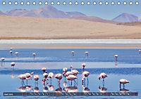 Peru Bolivien Chile (Tischkalender 2019 DIN A5 quer) - Produktdetailbild 6