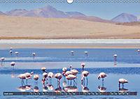 Peru Bolivien Chile (Wandkalender 2019 DIN A3 quer) - Produktdetailbild 10
