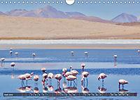 Peru Bolivien Chile (Wandkalender 2019 DIN A4 quer) - Produktdetailbild 6