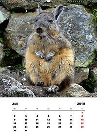 Peru - Ecuador (Wandkalender 2018 DIN A2 hoch) - Produktdetailbild 7