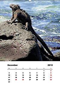 Peru - Ecuador (Wandkalender 2018 DIN A2 hoch) - Produktdetailbild 12