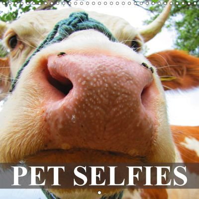 Pet Selfies (Wall Calendar 2018 300 × 300 mm Square), Elisabeth Stanzer
