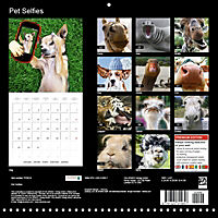 Pet Selfies (Wall Calendar 2018 300 × 300 mm Square) - Produktdetailbild 13