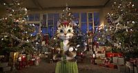 Pettersson und Findus - Das schönste Weihnachten überhaupt - Produktdetailbild 1